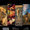 Découvrez la nouvelle brochure Horizons lointains 2017 !