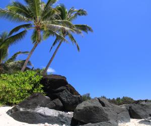 Les Îles Cook : un petit paradis au bout du monde