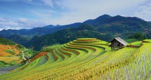 Beautes-du-Nord-du-Vietnam-1
