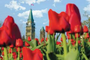 5866288017_8b2014e8e0_o credit Ottawa tourism