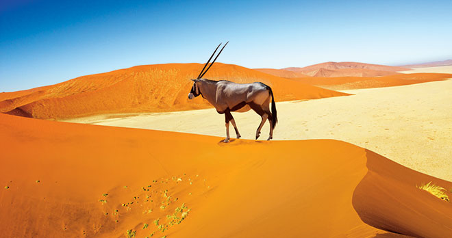 Couleurs-Namibie-1