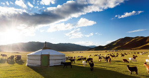 Mongolie-Culture-Nomade-1