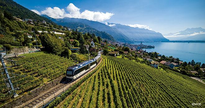 Decouverte-Suisse-1